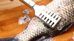 تنظيف قشور السمك في المنام