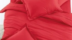تفسير حلم الغطاء الأحمر للعزباء في المنام