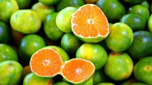تفسير حلم البرتقال الأخضر في المنام