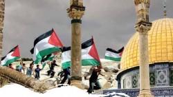 تفسير حلم تحرير فلسطين في المنام