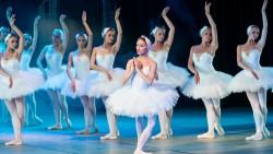 تفسير حلم رؤية رقص الباليه في المنام