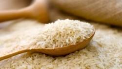 تفسير حلم الأرز اليابس في المنام